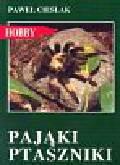 Cieślak Paweł - Pająki ptaszniki Hodowla w terrarium