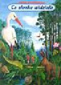 Konopnicka Maria - Co słonko widziało wśród lasów, wśród pól