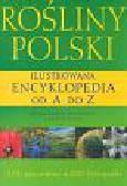 Krzyściak Kosińska Renata Kosiński Marek - Rośliny Polski Ilustrowana encyklopedia od A do Z