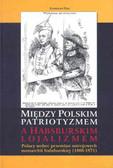 Pijaj Stanisław - Między polskim patriotyzmem