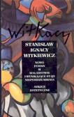 Witkiewicz Stanisław Ignacy - Nowe formy w malarstwie i wynikające stąd nieporozumienia. Szkice estetyczne