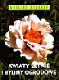 Siegfried Stein - Kwiaty letnie i byliny ogrodowe/Multico/