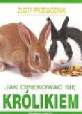 O`Neill Amanda - Jak opiekować się królikiem
