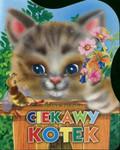 Pylcyna Jelena - Ciekawy kotek