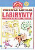 Labirynty i inne zadania logiczne