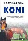 Hermsen Josee - Encyklopedia koni