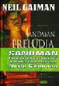 Gaiman Neil - Sandman Preludia i nokturny Tom 1
