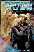 Loeb Jeph, Lee Jim, Williams Scott - Batman Hush część 2