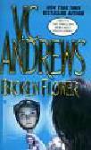 Andrews V.C. - Broken Flower