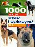 1000 rad, jak szkolić i wychowywać psa