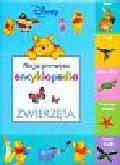 Moja pierwsza encyklopedia Zwierzęta