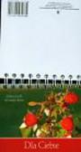 Różanek Aldona - Dla Ciebie Myśli na każdy dzień