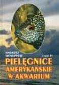 Sieniawski Andrzej - Pielęgnice amerykańskie w akwarium cz.2