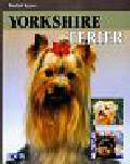 Keyes Rachel - Yorkshire Terier
