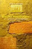 Joannes Francis - Historia Mezopotamii w I tysiącleciu przed Chrystusem