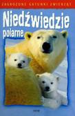 Orme Helen - Niedźwiedzie polarne