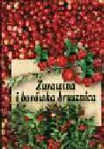 Piszka Kazimierz - Żurawina i borówka brusznica