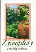 Wałeza Włodzimierz - Żywopłoty i rzeźby roślinne