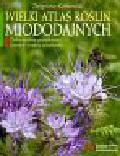 Kołtowski Zbigniew - Wielki atlas roślin miododajnych