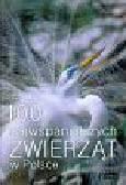 Józefowicz Anna, Mizera Tadeusz, Ratajszczak Radosław i inni - 100 Najwspanialszych zwierząt w Polsce