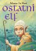 Mari Silvana - Ostatni elf