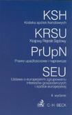Kodeks spółek handlowych, Krajowy Rejestr Sądowy, Prawo upadłościowe i naprawcze, Ustawa o europejskim zgrupowaniu interesów gospodarczych i spółce europejskiej