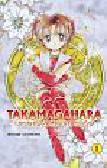 Tachikawa Megumi - Takamagahara 1