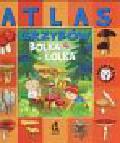 Atlas grzybów Bolka i Lolka