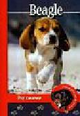 Pol Anna Magdalena - Pika przedstawia Beagle Psy rasowe