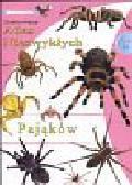 Ilustrowany atlas niezwykłych pająków
