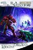 Salvatore R. A. - Mroczne oblężenie. Legenda Drizzta Księga IX