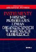 Instrumenty i obszary przeobrażeń i zmian organizacyjnych w warunkach globalizacji