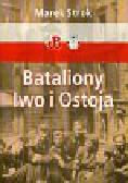 Strok Marek - Bataliony Iwo i Ostoja