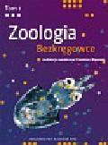 Zoologia Tom 1 Bezkręgowce