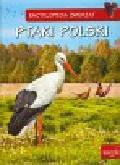 Zarych Elżbieta - Encyklopedia zwierząt Ptaki Polski