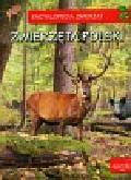 Zarych Elżbieta - Encyklopedia zwierząt Zwierzęta Polski