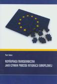 Solarz Piotr - Współpraca transgraniczna jako czynnik procesu integracji europejskiej