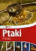 Piękna Polska Ptaki Polski