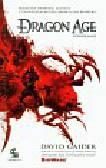 Gaider David - Dragon Age Powołanie