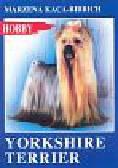 Kaca-Bibrich Marzena - Yorkshire terrier