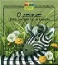 Onichimowska Anna - O zebrze która chciała być w kwiatki
