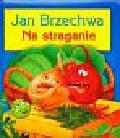 Brzechwa Jan - Na straganie