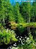 Kalendarz 2008 RW05 Pejzaże leśne