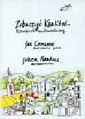 Zobaczyć Kraków Przewodnik multimedialny (Płyta DVD)