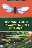 Stocki Jacek, Kinelski Stanisław, Dzwonkowski Robert - Drzewa iglaste i owady na nich żerujące