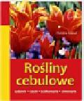 Knebel Christina - Rośliny cebulowe