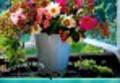 Kalendarz 2009 WL02 Kwiaty rodzinny
