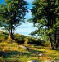 Kalendarz 2009 RW05 Pejzaże leśne