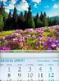 Kalendarz 2010 KT05 Krokusy trójdzielny