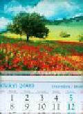 Kalendarz 2010 KT13 Łąka trójdzielny